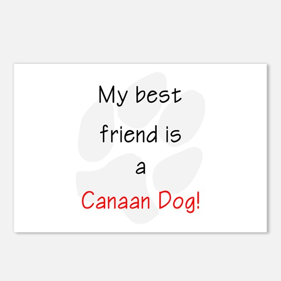 My best friend is a Canaan Dog Postcards (Package