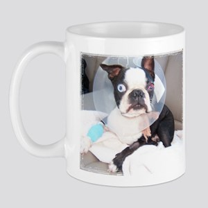 Boston Terrier Get Well Mug