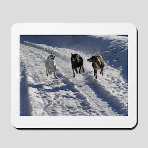 Racing Snow Hounds Mousepad