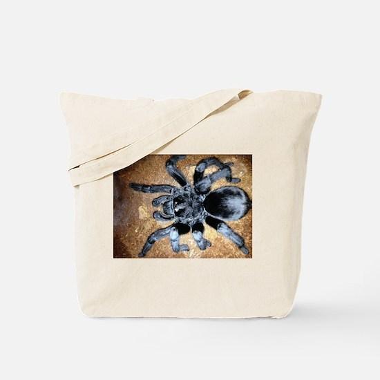 Brazilian Black Tarantula Tote Bag