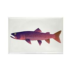 Taimen Rectangle Magnet (100 pack)