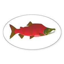 Sockeye Kokanee Salmon male f Sticker