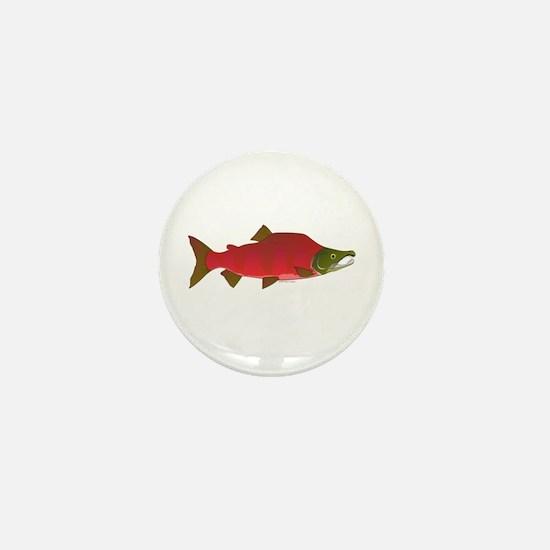 Sockeye Kokanee Salmon male f Mini Button