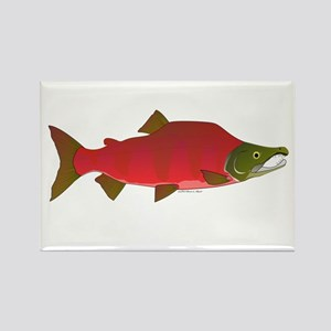 Sockeye Kokanee Salmon male f Rectangle Magnet