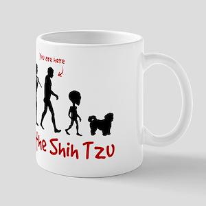 SHIH TZU Evolution - You are Here Mug