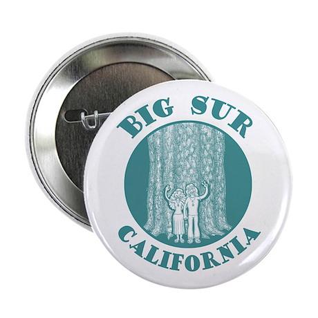 Big Sur Button