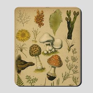 Antique Botanical--Mushrooms Mousepad