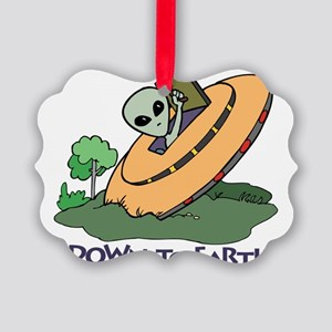 Down to Earth Picture Ornament