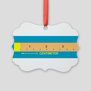 Centimeter Picture Ornament