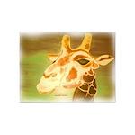 Henri The Giraffe 5'x7'Area Rug