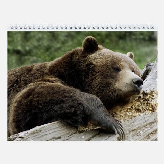 Wildlife Photo Wall Calendar