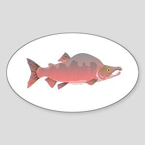 Pink Humpy Male salmon f Sticker