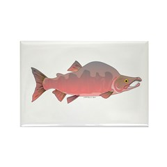Pink Humpy Male salmon f Rectangle Magnet (100 pac