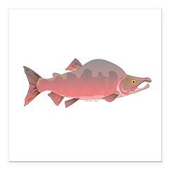 Pink Humpy Male salmon f Square Car Magnet 3