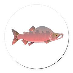 Pink Humpy Male salmon f Round Car Magnet