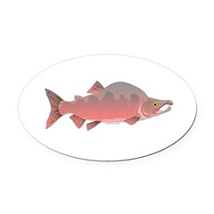 Pink Humpy Male salmon f Oval Car Magnet