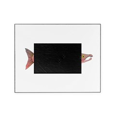 Pink Humpy Male salmon f Picture Frame