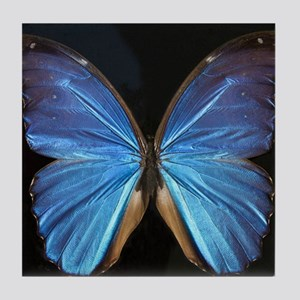 Elegant Blue Butterfly Tile Coaster