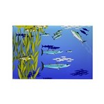Kelp Edge Action ps Rectangle Magnet (100 pack)