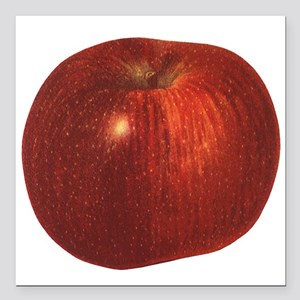 Vintage Food, Red Delicious Organic Apple Fruit Sq
