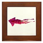 Humboldt Squid f Framed Tile