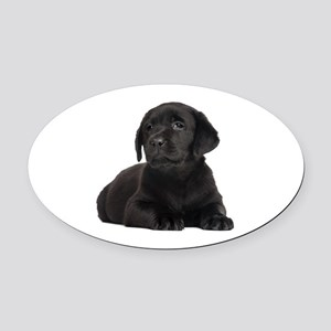 Labrador Retriever Oval Car Magnet