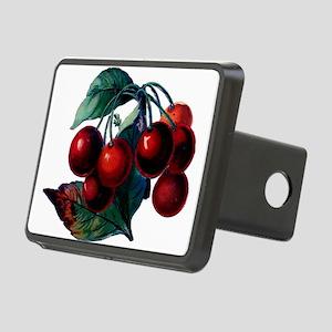 Vintage Cherry Big Red Juicy Cherries Fruit Hitch