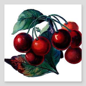 Vintage Cherry Big Red Juicy Cherries Fruit Square