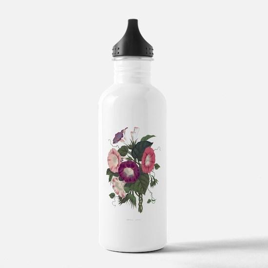 Vintage Morning Glories Water Bottle