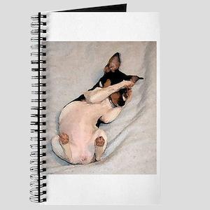Rat Terrier Journal