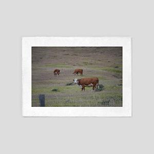 Cows 5'x7'Area Rug