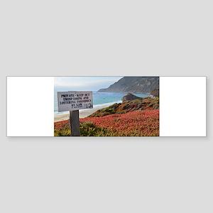 Private Coastline Bumper Sticker