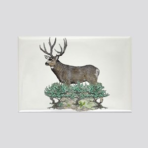 Buck watercolor art Rectangle Magnet