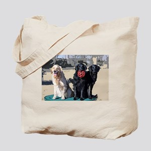 2flat1golden Tote Bag