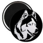 Siberian Husky Magnets Sled Dog Magnet (100 pack)
