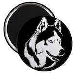 Siberian Husky Magnet Sled Dog Magnet (10 pack)
