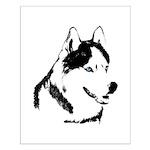 Siberian Husky Sled Dog Small Poster