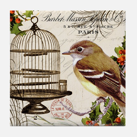 modern vintage winter garden bird and birdcage Til