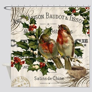 modern vintage winter garden birds on holly branch