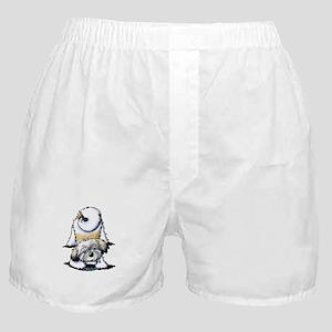 Playful Havanese Boxer Shorts