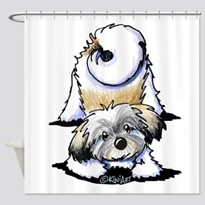 Playful Havanese Shower Curtain