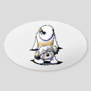Playful Havanese Sticker (Oval)