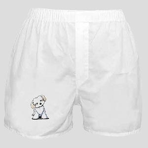Havanese Sweetie Boxer Shorts