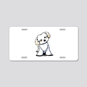 Havanese Sweetie Aluminum License Plate