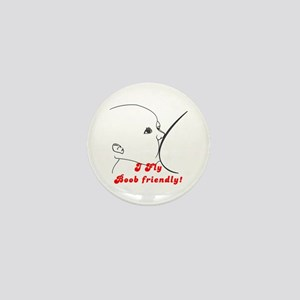 I fly Boob Friendly! Breastfeeding advocacy Mini B