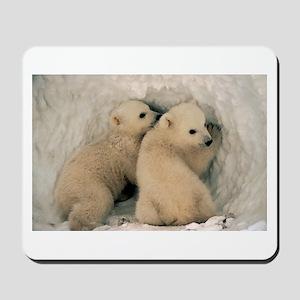 Polar Bear Cubby Mousepad