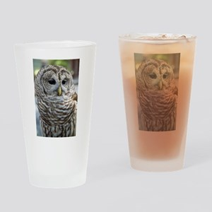 Barred Owl: Who are you??? Drinking Glass