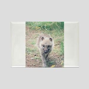 """Arctic Cub"" Rectangle Magnet"