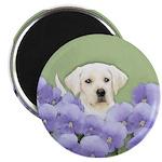 Labrador Retriever Puppy Magnet