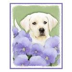 Labrador Retriever Puppy Small Poster